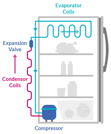 How your fridge works