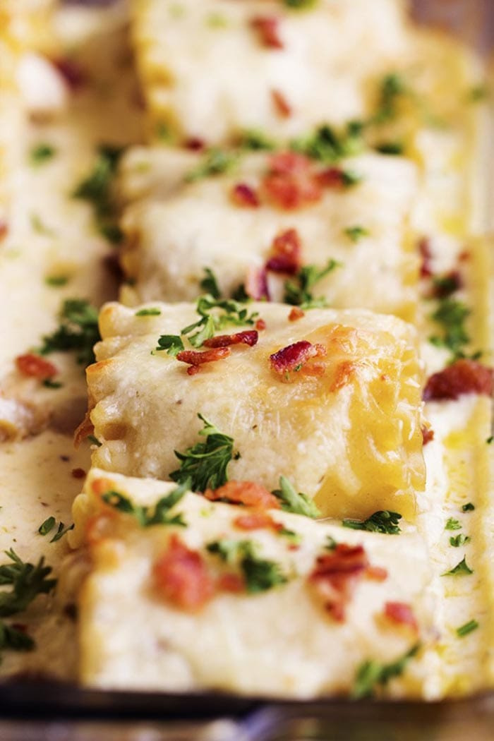 Bacon Day - Recipes - Chicken Alfredo Bacon Rollups