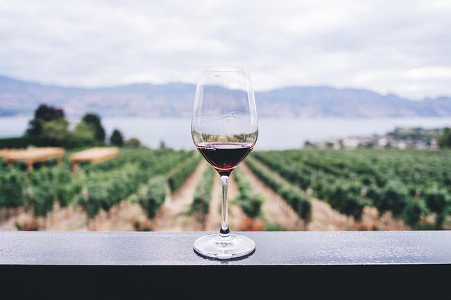 Wine lovers: Red Wine