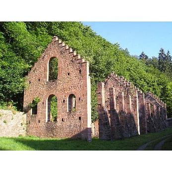 les-ruines-de-la-forge-jaegerthal-de-dietrich-14365-600-600-F