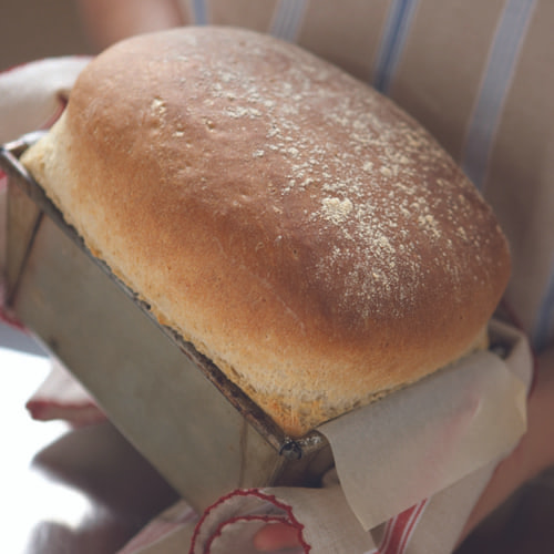 loaf bread_500x500