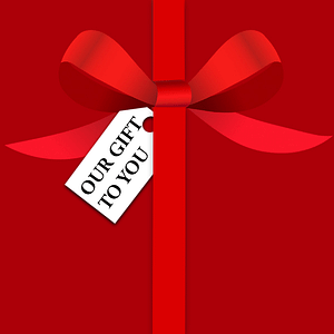 Our gift to you in 2020: A 12 Day Festive Giveaway