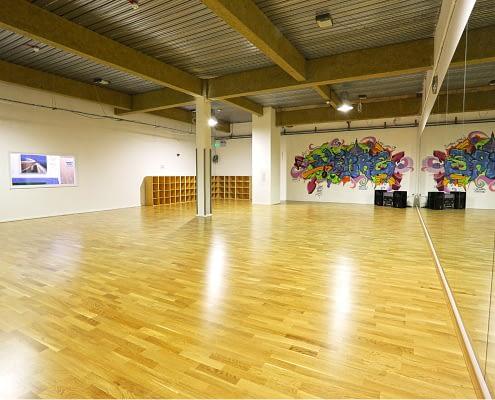 Meadow Sprung Dance Floor (BM Studios)