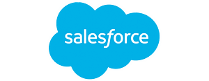 Salesforce single logo blue