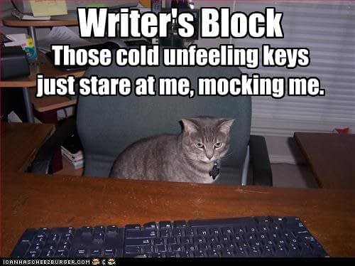 Writer's Block Cat