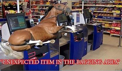 horsemeat meme