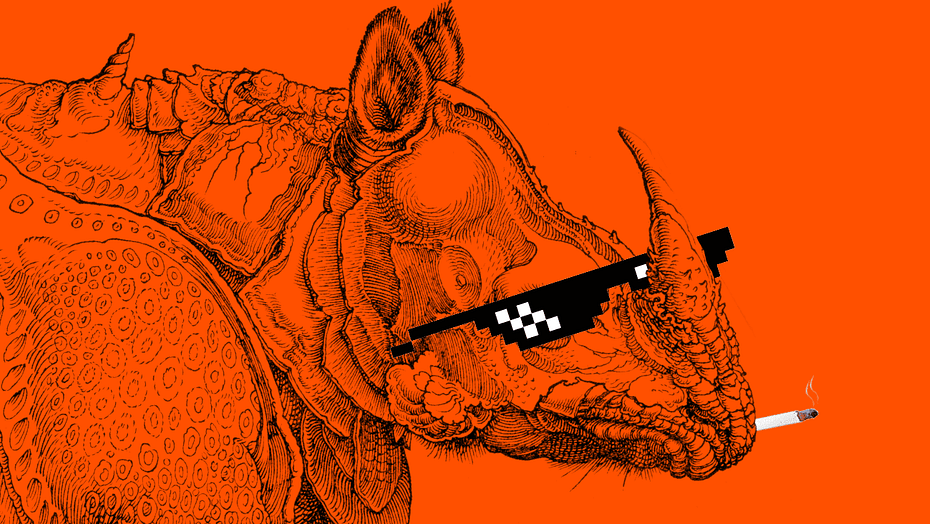 Durer's Rhino
