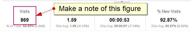 Google Analytics organic visits