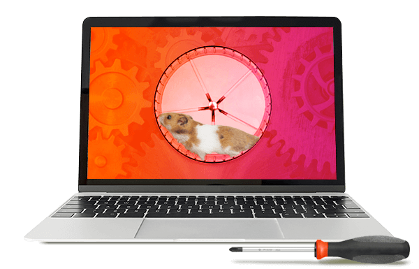A laptop screen showing a hamster in a wheel